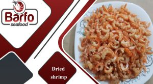 dried fish & shrimp